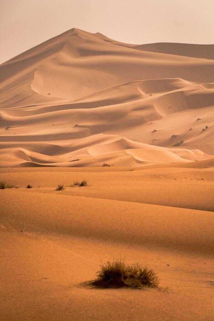Hvad koster sand?